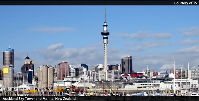 预定 New Zealand Fly Drive Holidays