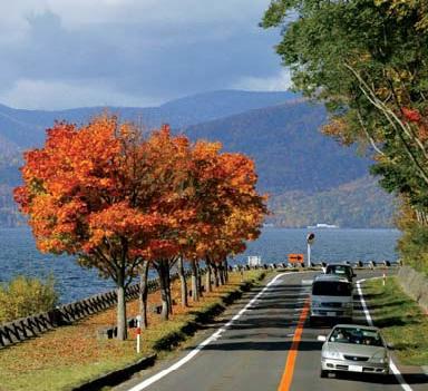 预定 South Hokkaido Autumn Splendour tour