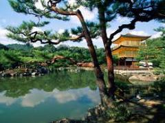 Golden Japan tour