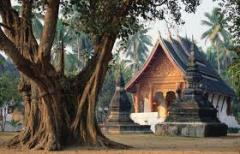 CAMBODIA EXPERIENCE PHNOM PENH - SIEM REAP TOUR