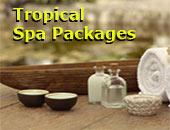 Batam Tropical Spa Packages tour