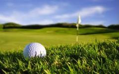Ria Bintan Daytripper Golf Package tour
