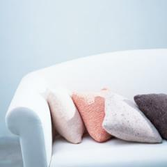 UpholsteryCare