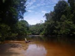 Kuching Holidays