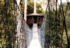 Brunei Nature to Wonder tour