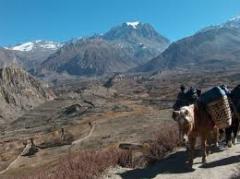 Wonderful Nepal tour