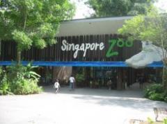 Zoological garden tour