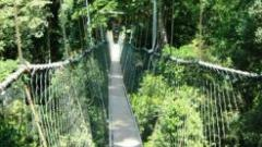 Taman Negara Adventure tour
