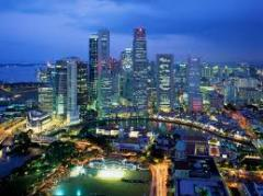 Singapore by Night & Flyer with Dinner Tour