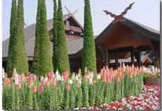Chiangmai & Chiangrai land tour