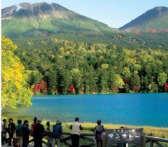 East Hokkaido Autumn Brilliance tour
