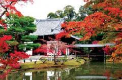 Hokuriku Autumn Colours tour