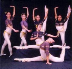 Theatrical Syllabus