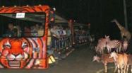 Singapore Night Safari Park tour